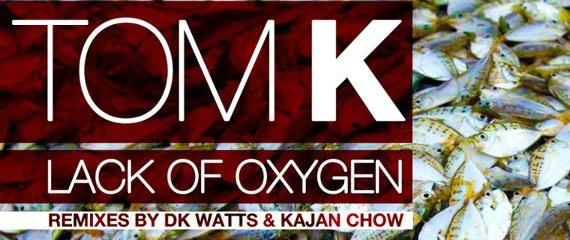 Suntree Records Tom K Kajan Chow Remix Hammarica PR